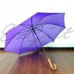 webpage_purple